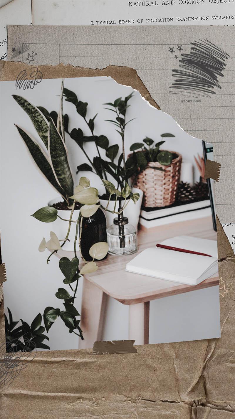 Instagram frame ideas