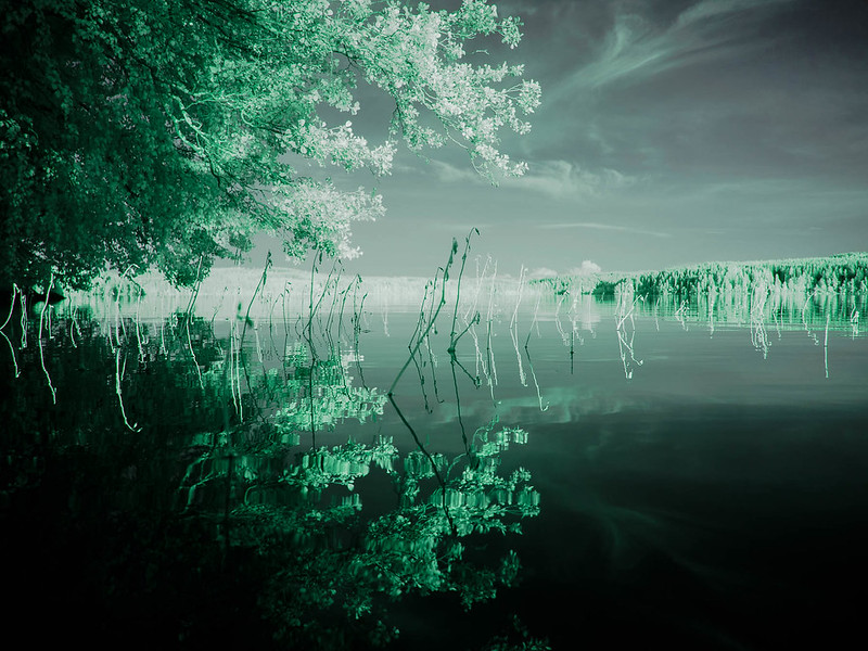Infrared of the day 73