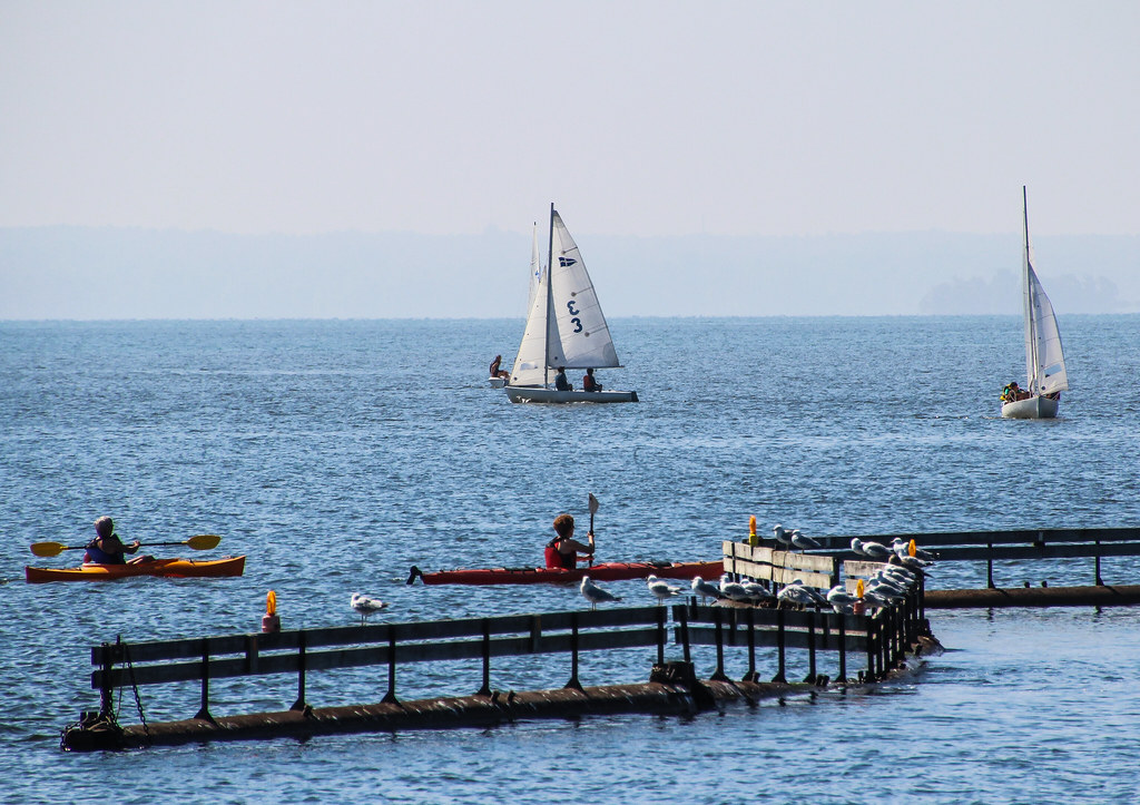 2011 1-5-8 august lakeshore-12