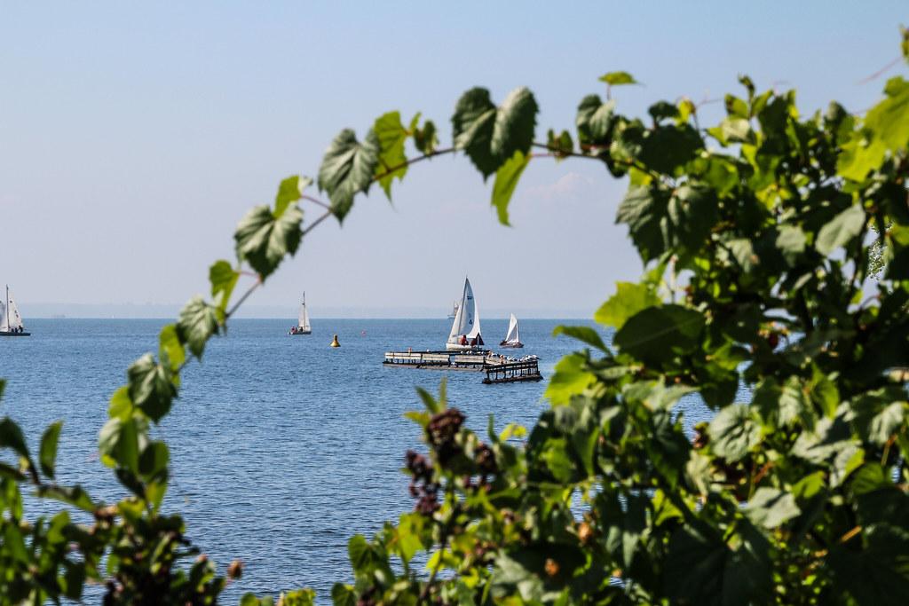 2011 1-5-8 august lakeshore-06