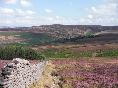 Backview from Stake Side across Goyt Valley up Goyt's Moss to Burbage Edge SWC Walk 389 - Buxton to Macclesfield