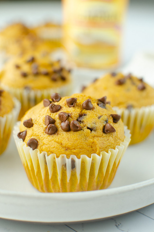 Pumpkin muffins with miniature chocolate chips on a white plate with more muffins in the background