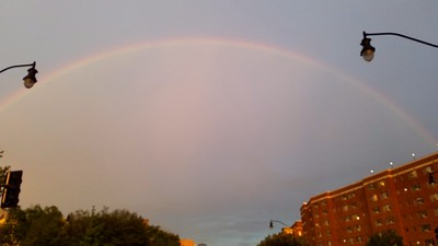 D.C. Rainbow