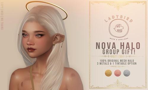 Ladybird. // Nova Halo Group Gift!