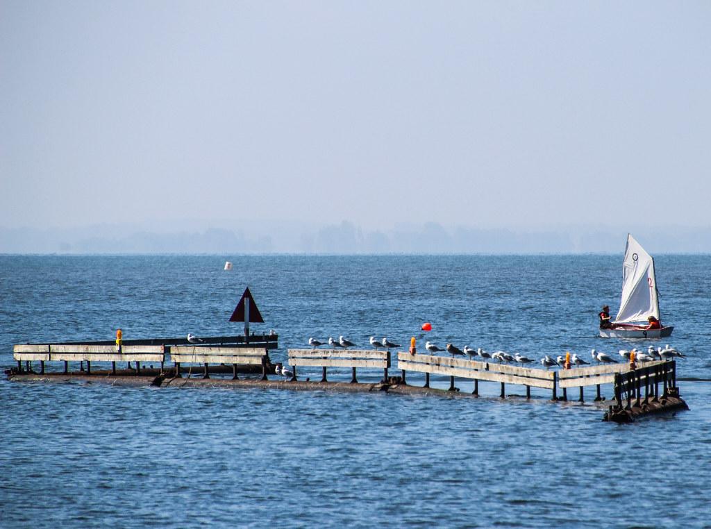 2011 1-5-8 august lakeshore-05
