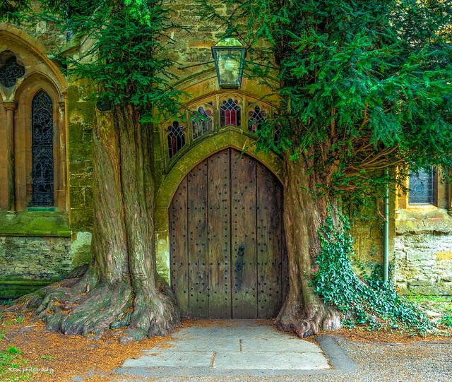 Church door with yew trees
