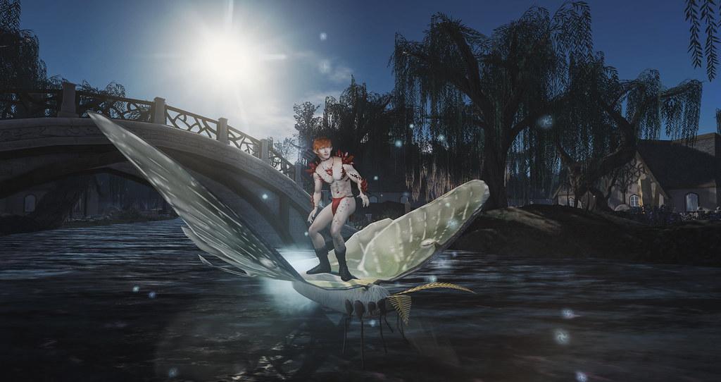 Ride the Luna Moth