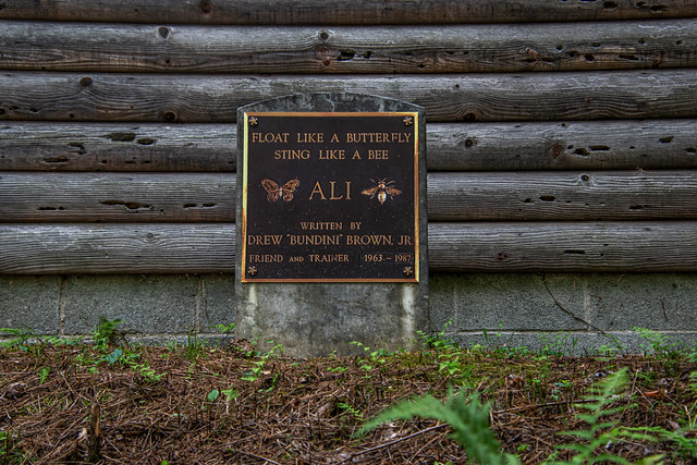Fighter's Heaven, Muhammad Ali's Training Camp - Deer Lake, Pennsylvania - JHM CREATIONZ