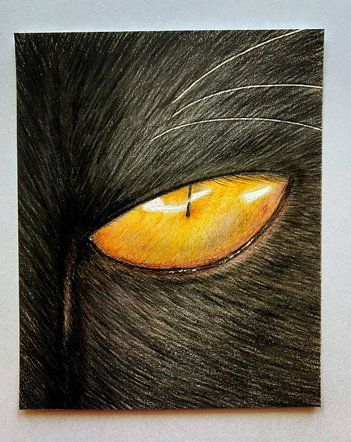 Black Cat's eye Polychromos Faber Castell