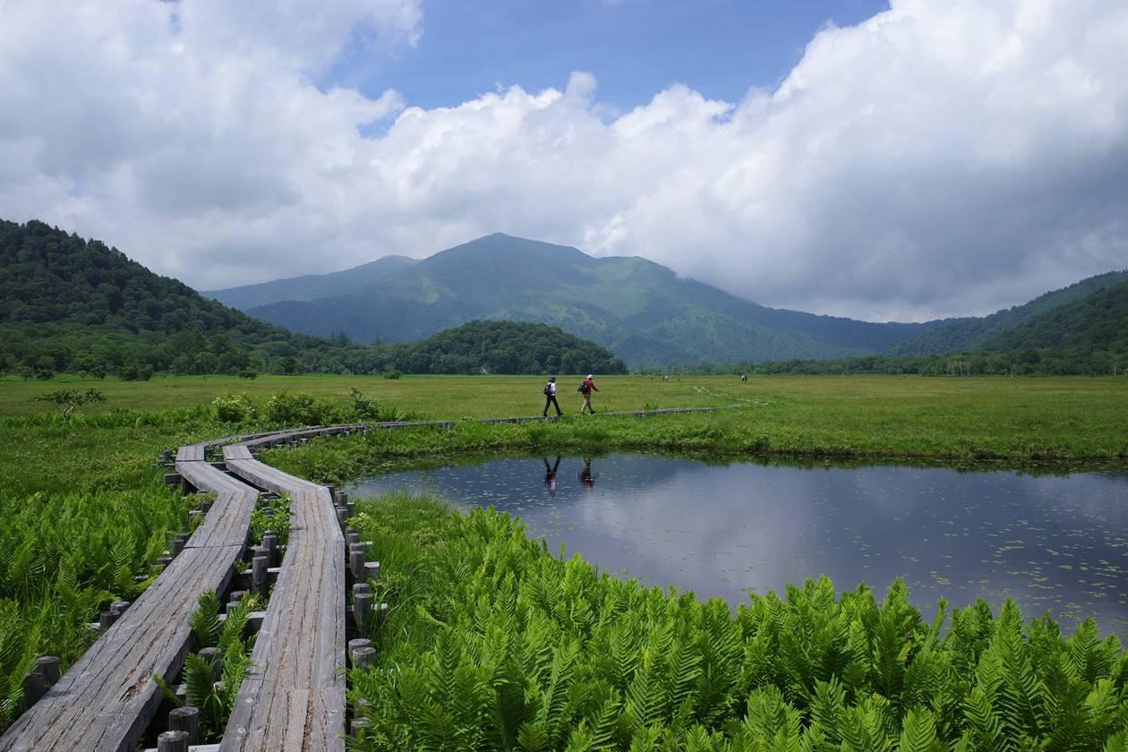 夏の尾瀬ヶ原と至仏山