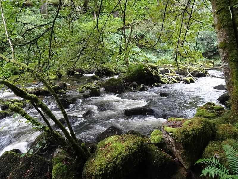 Waterfall Country Walk: Waterfall Link Trail, following the Nedd Fechan upstream