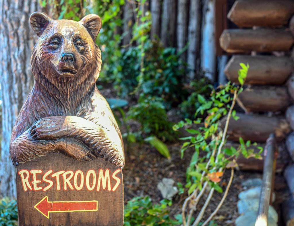 Bathroom bear DL