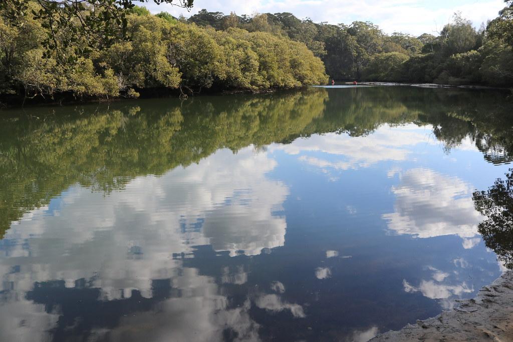 Lane Cove River