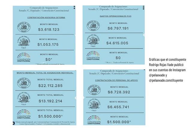 Publicación de constituyente Rodrigo Rojas