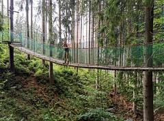 Vistué mosty na Pašerácké stezce