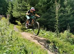 Trail Refresh
