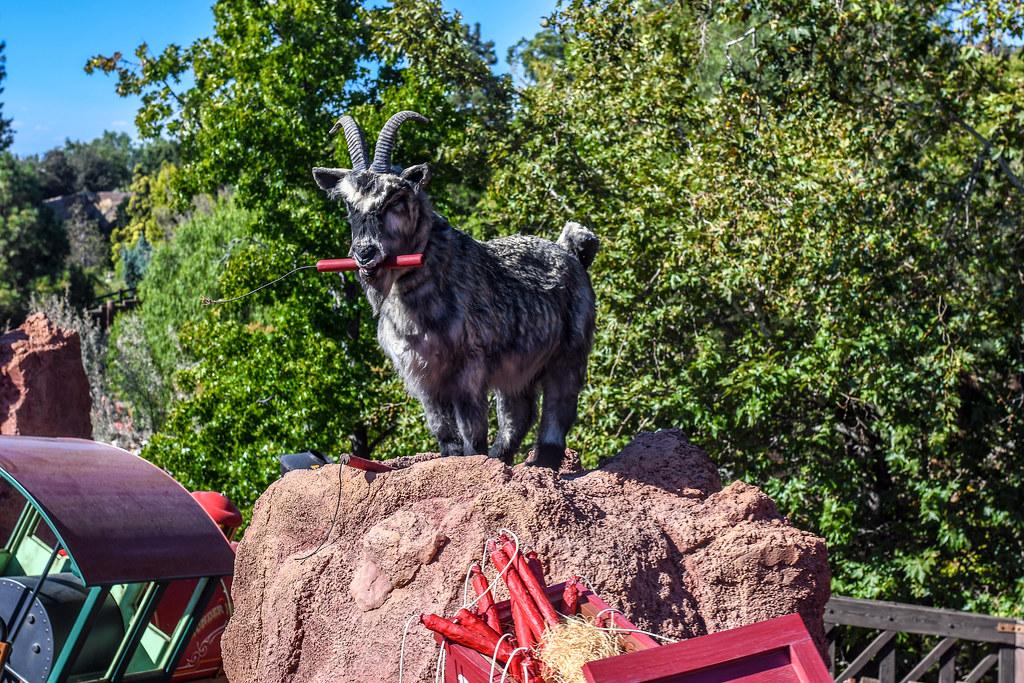 Big Thunder Mountain Goat DL