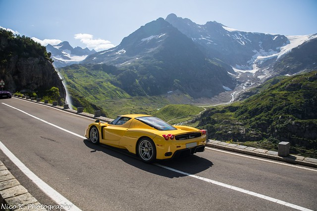 Enzo in the Alps