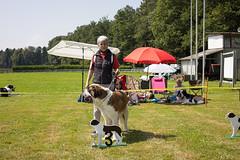 2021-08-14 Clubshow Lotzwil