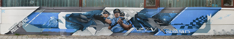 cops panorama (sold and spoare)