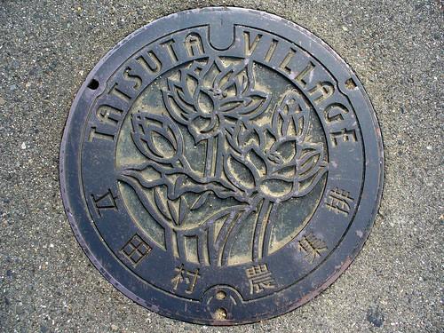 Tatsuta Aichi, manhole cover (愛知県立田村のマンホール)