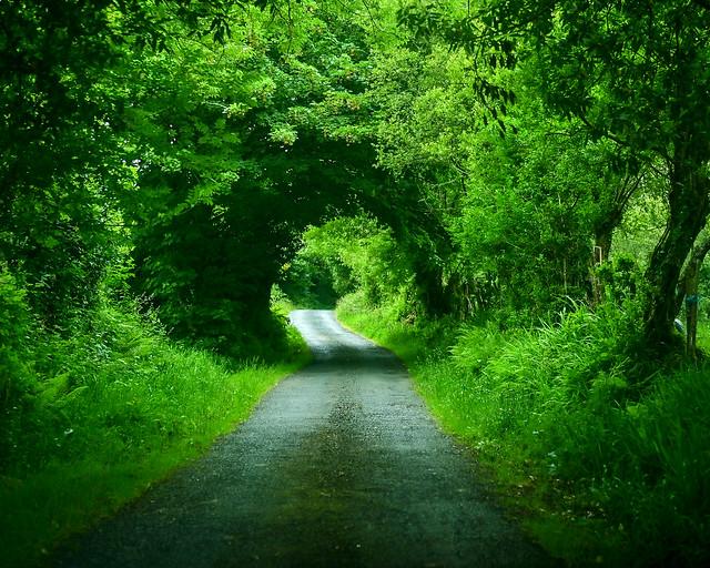Caminos por Galicia