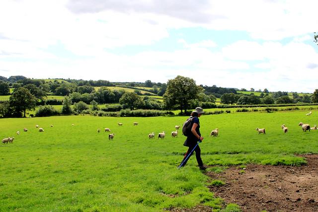 Devon walking
