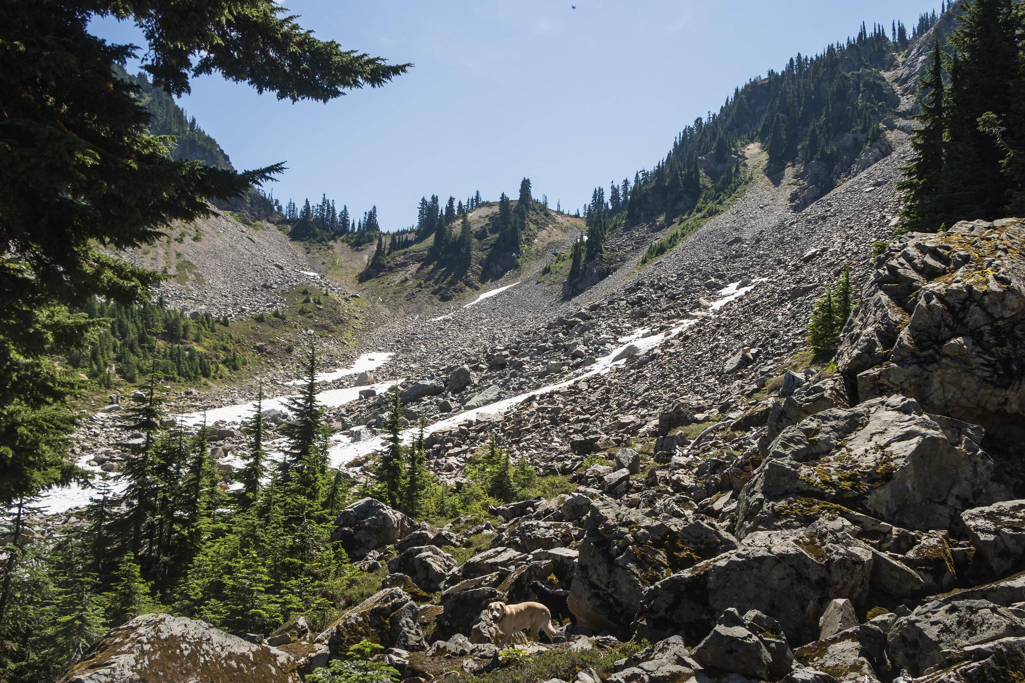 Silver Eagle Peak east basin