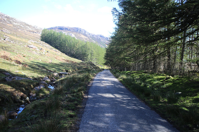 Badrallach Road