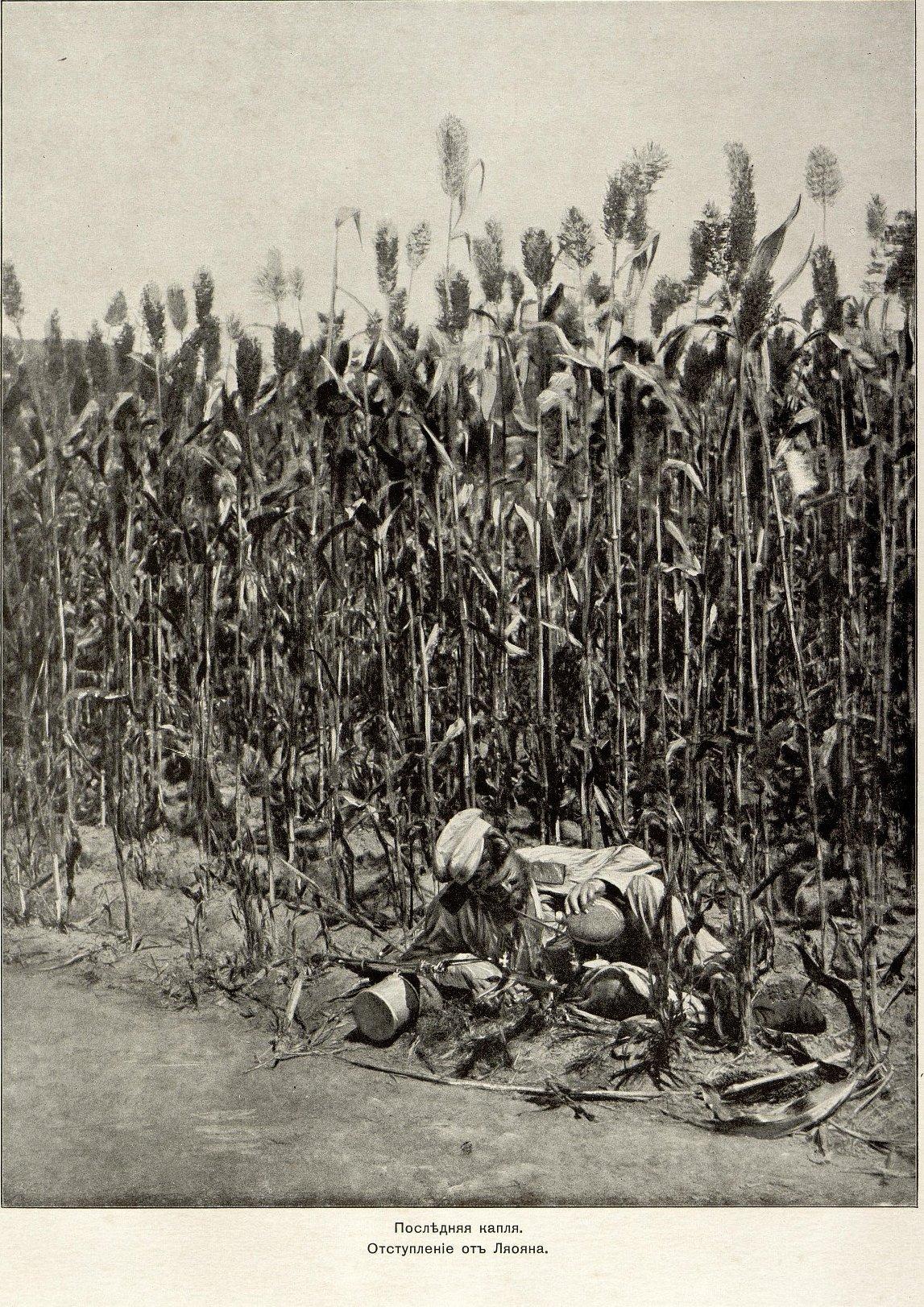Прокудин-Горский С.М. Снимки из альбома «Русско-Японская война 1904-05 г.»
