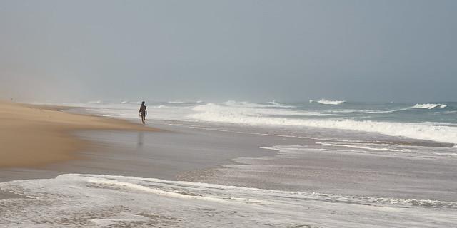 Promenade solitaire sur la plage