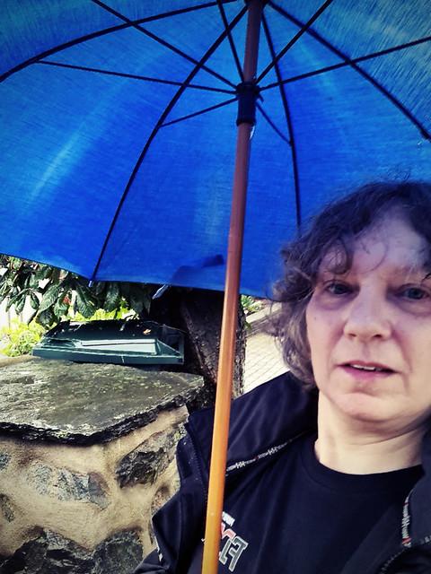 Under paraplyet
