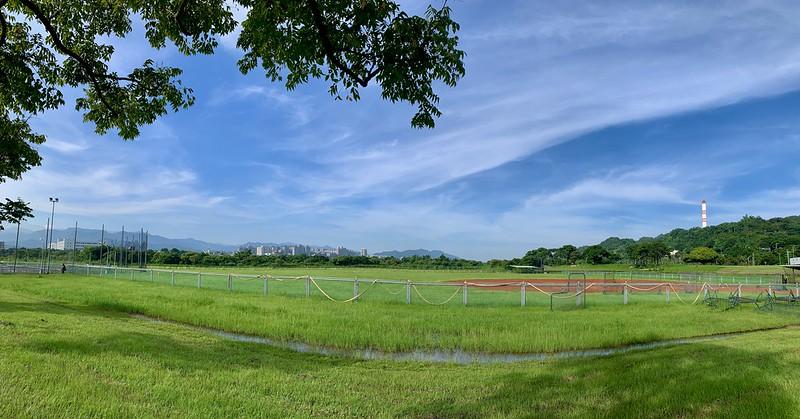 新北樹林河濱公園 棒球場