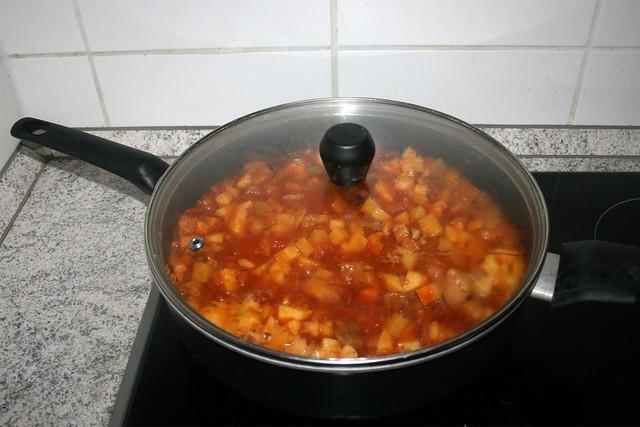 35 - Continue simmer with lid on / Weiter geschlossen köcheln lassen