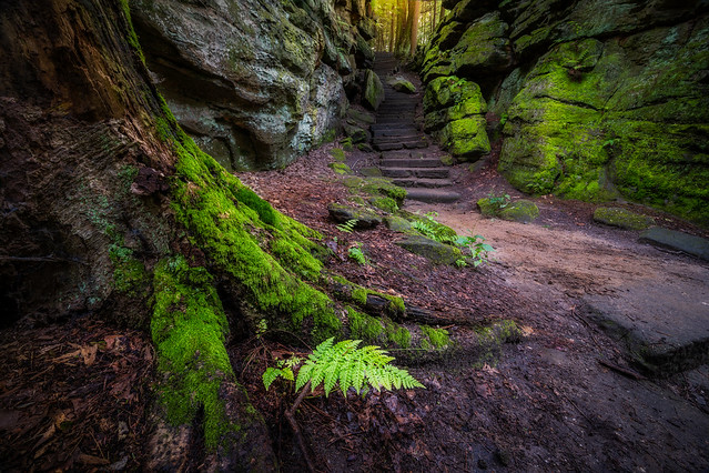 Stairs to Middle Earth