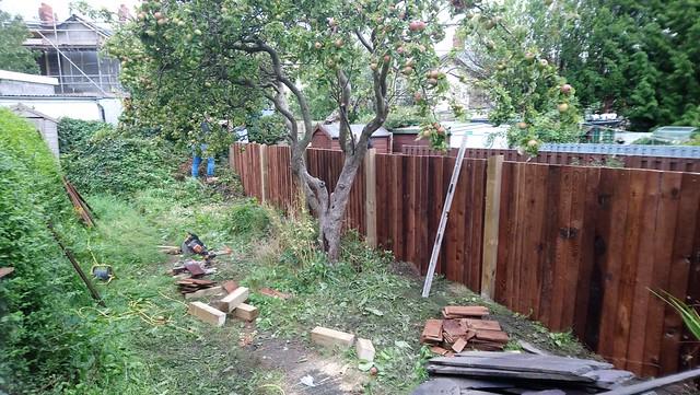 New fence / Ffens newydd