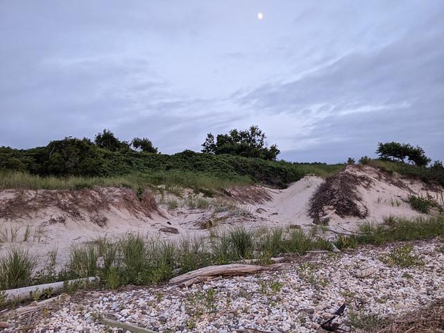 dunes @ sunset