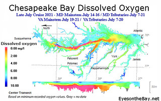 Map of Chesapeake Bay Dissolved Oxygen, late July 2021
