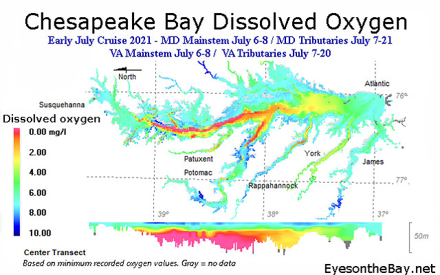 Map of Chesapeake Bay Dissolved Oxygen levels from early July 2021