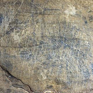 10 - Petroglyphs