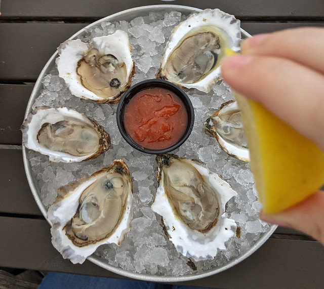 my first taste of oysters this summer