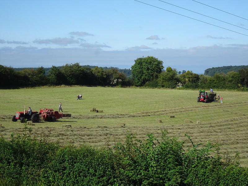 Hay baling in Kiln Field