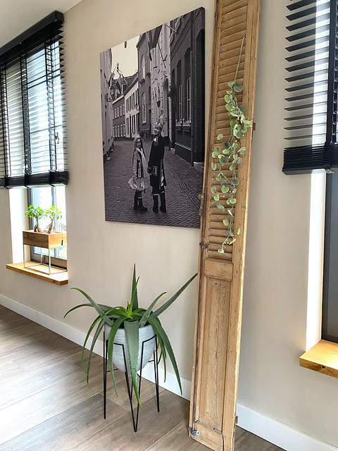 Houten louvredeur met hangplant zwartwit canvas met kinderen zwarte jaloezieën plant op standaard