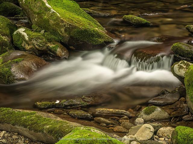 Waterfall in miniature, Lynn Camp Prong
