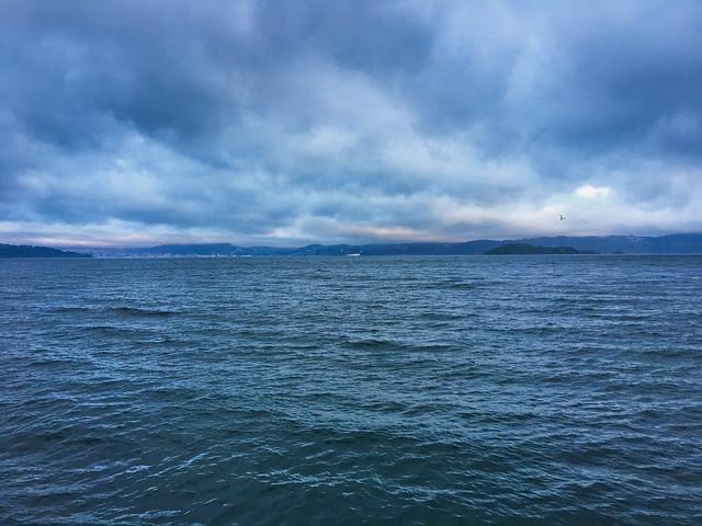 Days Bay Seascape