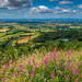 England's Finest View, Sutton Bank, North Yorkshire
