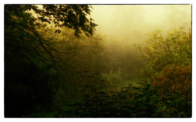 Early Morning Fire Haze_DSC_0825