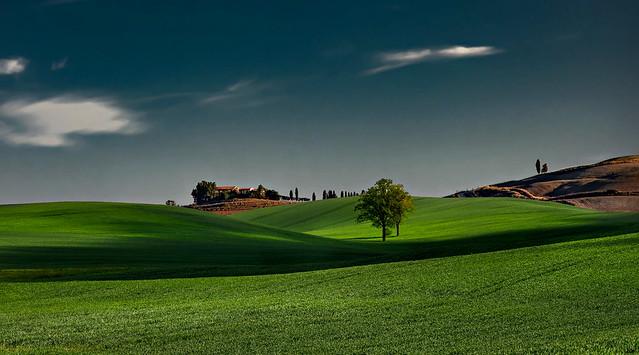 verde campagna