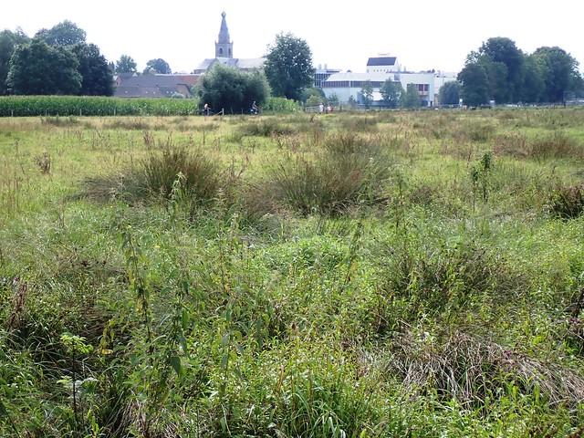 2021-08-12        Dag 2  Rugzak - 10 - daagse  Heuvelland   (43)