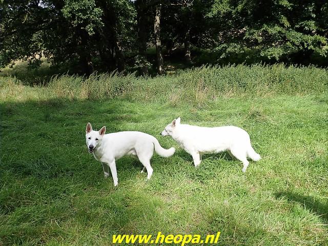 2021-08-13         Dag 3 Rugzak - 10 -  Daagse  Heuvelland   (45)